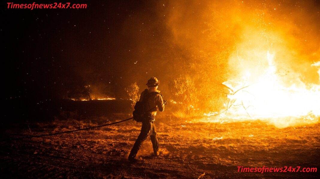 Terrible Fire In West America's Forests